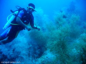 Diving on Camiguin Island, Philippines